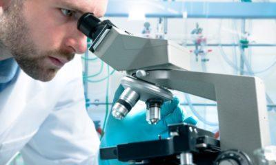 Productia Biofarm ramane la capacitate maxima